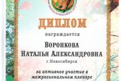 Кемерово-2014